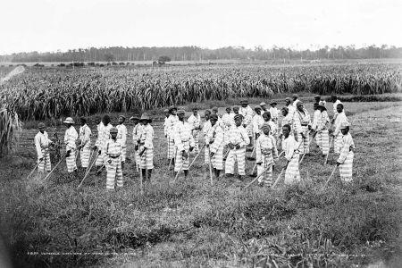 1903 - Juvenile Convicts